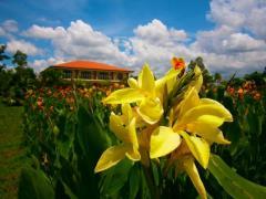 Villa Crisanta Garden Resort and Pavilion