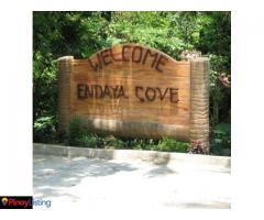 Endaya Cove