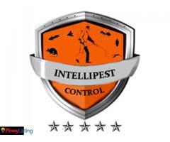 Intellipest Control Inc