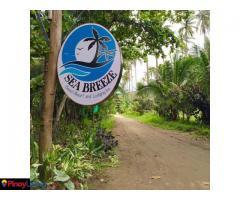 Sea Breeze Beach Resort & Lodging Inn