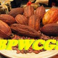 Bukidnon Phillippines Women Cacao Growers Society