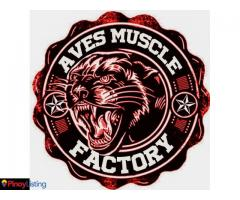 Aves Muscle Factory Fitness Gym