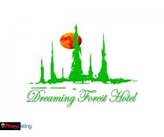 Dreaming Forest Hotel
