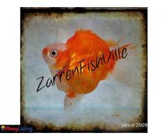 Zarrenfishville