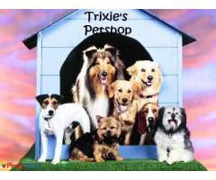 Trixie's Petshop