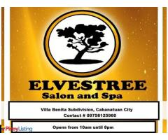 Elvestree Salon And Spa