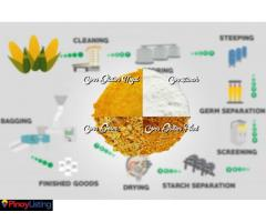 Lamsan Inc., Corn Wet Milling Company in the Philippines