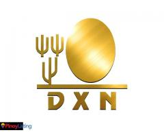 MY DXN Online