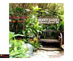 Hidden Garden Vigan- Lilong & Lilang Restaurant