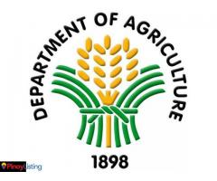 Department of Agriculture-Philippines