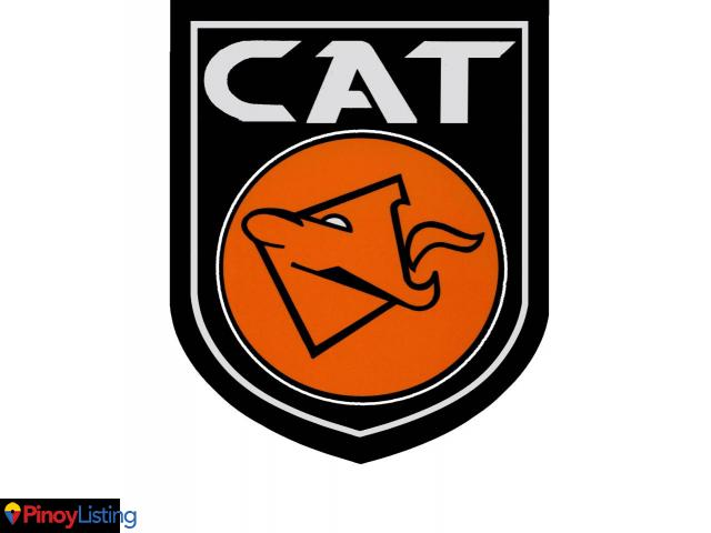 CAT Security Group