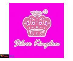 Silver Kingdom
