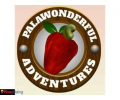 Palawanderful Adventures Travel and Tours