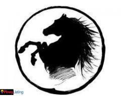 BLACK Stallion KTV and DISCO + LIVE BAND Tagum City