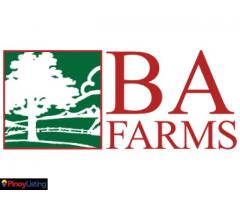 BA Farms, Inc.