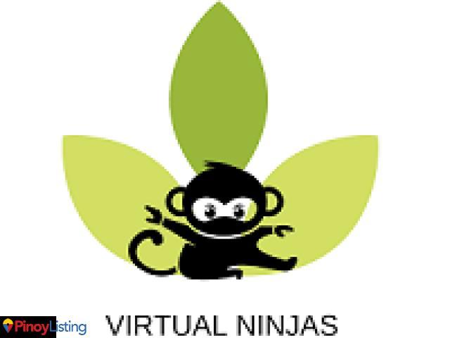 Virtual Ninjas PH