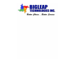 BIGLEAP TECHNOLOGIES INC