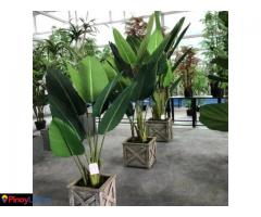 Sharetrade Artificial Plant Manufacturer Co., Ltd