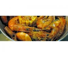 Bucket O' Shrimp & More CDO
