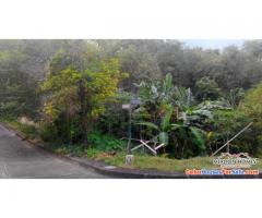 El Monteverde de Cebu