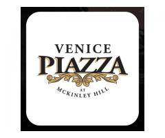 The Piazza at Venice, McKinley