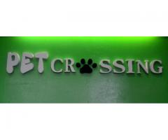 Pet Crossing Animal Clinic