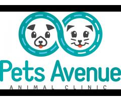 Pets Avenue Animal Clinic