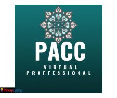Virtual Services by Patricia Ann Castillo