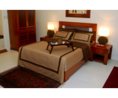 Linea Furniture