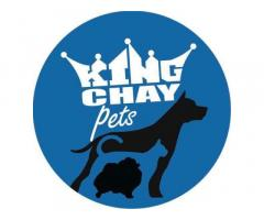 King Chay Pets Transport Services