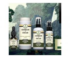 Kombucha Matcha Health & Wellness Shop and E-Com Business Opportunity