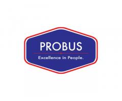 Probus Business Consulting, Inc.
