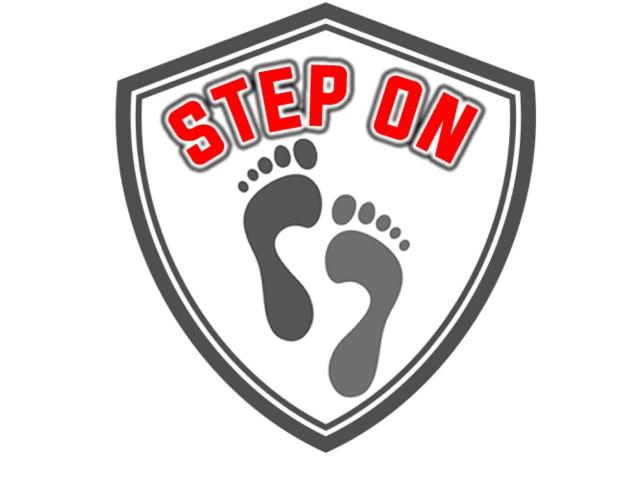 Step On Disinfectant Mat