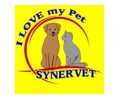 Synervet Animal Clinic and Veterinary Supplies
