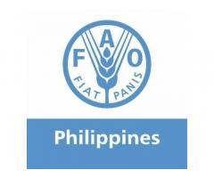 Food and Agriculture Organization of the United Nations - Philippines