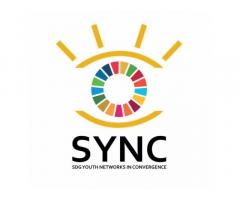 SDG Youth Networks in Convergence