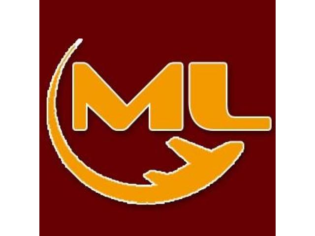 ML Freight Forwarder Forwarding Services