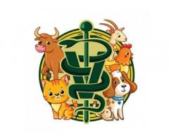 Animal's Choice Veterinary Clinic