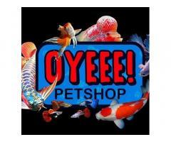 Oyeee Pet Shop
