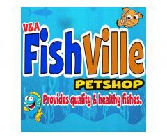 V&A Fishville Petshop