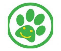 Transpetify Pet Transport Service
