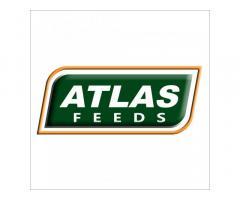 Atlas Feeds