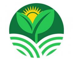 Agricultural Bank of the Philippines, Inc.