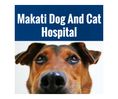 Makati Dog And Cat Hospital Makati Metro Manila