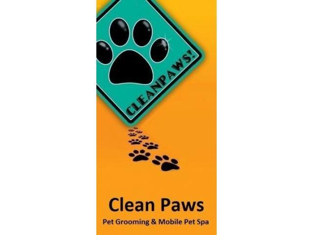 Clean Paws Manila