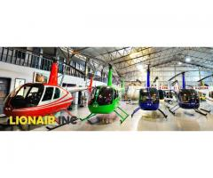 Lionair Incorporated