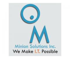 Minion Solutions Inc.