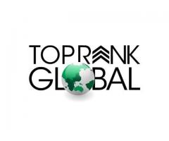 Top Rank Global SEO Outsourcing