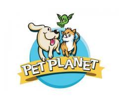 Pet Planet Phil