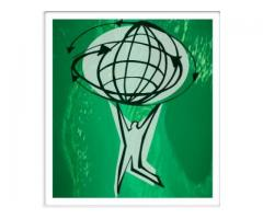 MMS Placement International Inc
